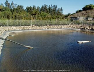 Fig. 11. This lined retention basin has rock rip-rap along the sides for stabilization. Photo: D. Zurawski and J.P. Newman.